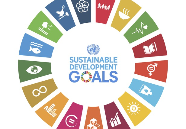 The SDGs outline the path for a fair and sustainable recovery at the local, regional and European level