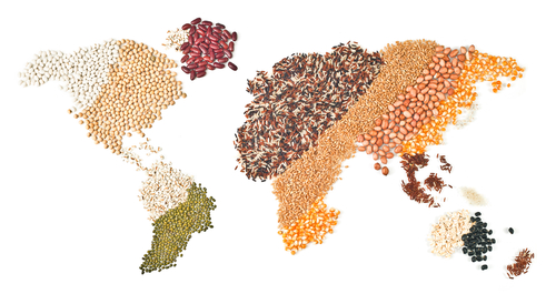 Changing the rules of international trade, a necessary condition for facing the challenges of agriculture, food and planet