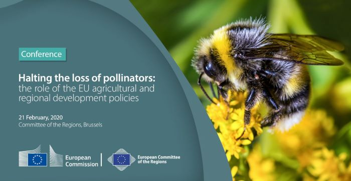 Halting the loss of pollinators - The role of the EU agricultural and regional development policies