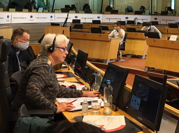 COTER members discussed equivalent living standards for European citizens and the upcoming European Year of Rail